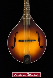 2014-The-Loar-LM-290-MS_2
